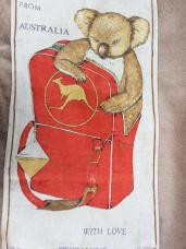Quantus Koala. On 'loan' from Viv