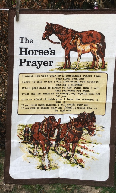 Horse's Prayer: Acquired 2020. Not yet blogged about