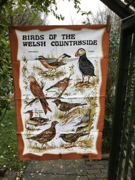 Birds of the Welsh Countryside: Acquired in 2018 as part of a collection, not yet blogged about