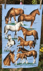 Horses on a Blue Background: Acquired 2020. Not yet blogged about