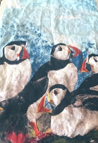 Puffins: On 'loan'