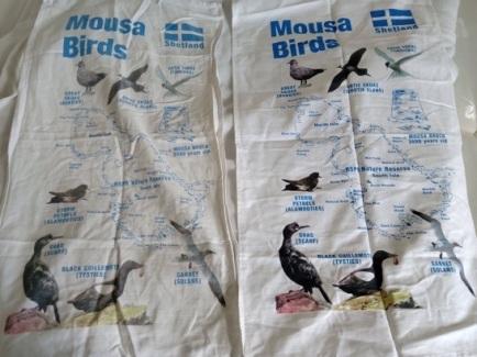 Mousa Birds: On 'loan'