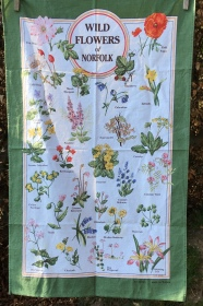 Wild Flowers of Norfolk: Acquired 2020. Not yet blogged about