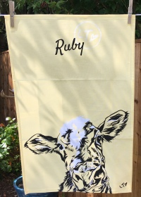 Highland Coos: 2019. To read the story www.myteatowels.wordpress.com/2019/07/06/hig