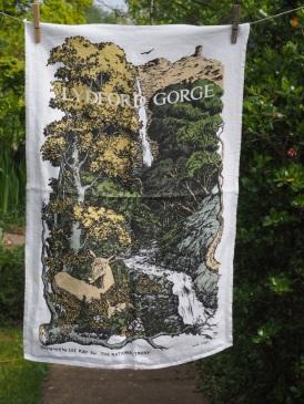 Lydford Gorge: 2006. To read the story www.myteatowels.wordpress.com/2015/12/01/lyd