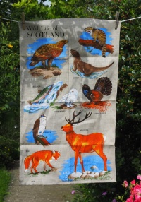 Wildlife of Scotland: Acquired 2017, vintage. To read the story www.myteatowels.wordpress.com/2018/11/30/wil