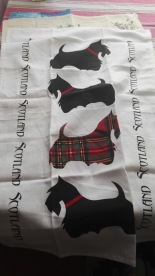 Scotties Dogs. On 'loan' from Andrew