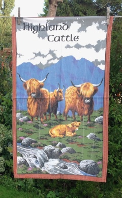 Highland Cattle: 2007. To read the story www.myteatowels.wordpress.com/2015/05/25/hig