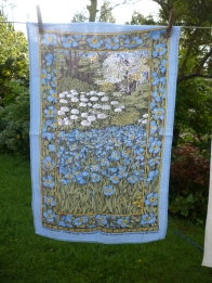 Meconopsis: 2005. To read the story www.myteatowels.wordpress.com/2017/12/11/mec