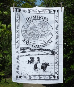 Dumfries and Galloway: 2010. Not yet blogged about