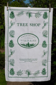 Tree Shop: 1998. To read the story www.myteatowels.wordpress.com/2017/07/13/the