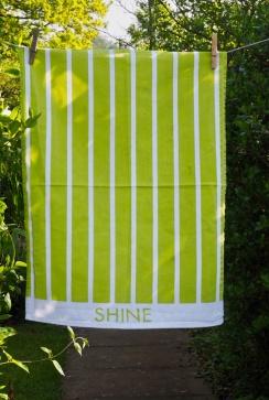 Shine: A true U.T.T. To read the story www.myteatowels.wordpress.com/2017/07/18/shi