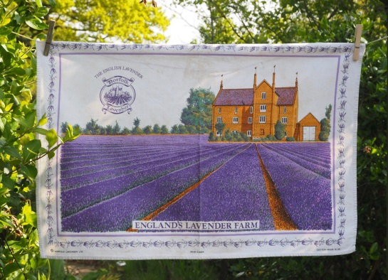 Norfolk Lavender: 1998. To read the story www.myteatowels.wordpress.com/2015/12/04/nor