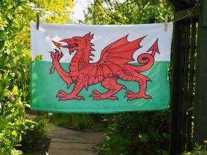 Welsh Dragon: 2012. To read the story www.myteatowels.wordpress.com/2016/01/15/wel