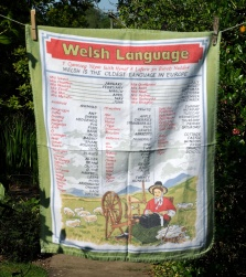 Welsh Language: 1970. To read the story www.myteatowels.wordpress.com/2015/05/22/swansea-1970/