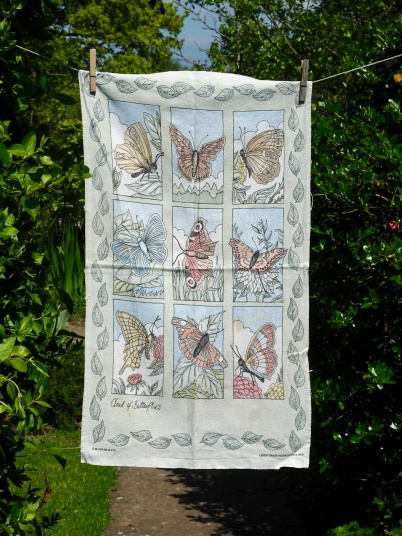 A Cloud of Butterflies: 1996. To read the story www.myteatowels.wordpress.com/2016/05/17/clo