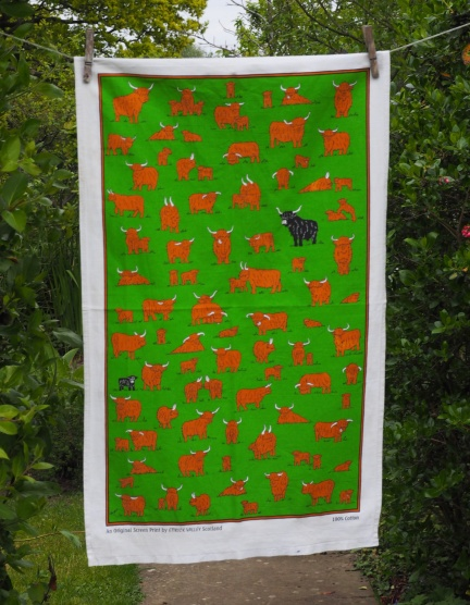 Highland Herd: 2011. To read the story www.myteatowels.wordpress.com/2016/10/28/hig