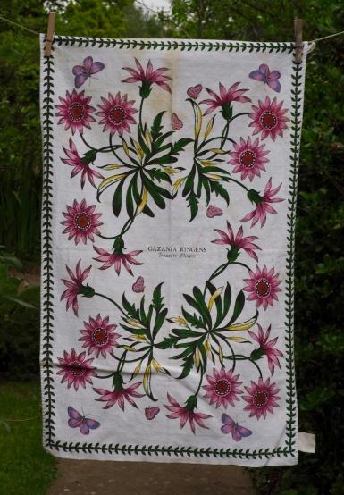 Portmeirion Botanic Garden: 1985 and 1993. To read the story www.myteatowels.wordpress.com/2016/10/03/por