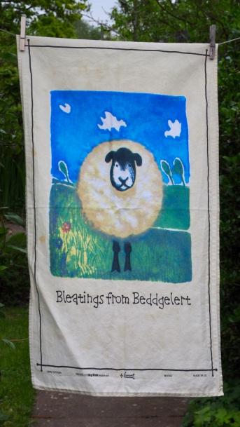 Bleatings from Beddgelert: 2009. To read the story www.myteatowels.wordpress.com/2017/09/17/ble