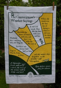 The Countryman's Weather Sayings: 2017. To read the story www.myteatowels.wordpress.com/2019/05/05/coun