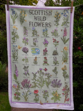 """Scottish Wild Flowers: Acquired 2015, vintage """"I bought this on a day trip to Stonehaven. We had a lovely tea there and this tea towel reminded me of all the work I did with the Guides when we had to teach the girls about wild flowers when we were out camping"""" Also to read the story www.myteatowels.wordpress.com/2018/12/22/flo"""