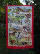 Life on the Farm: 2017. To read the story www.myteatowels.wordpress.com/2019/05/09/lif