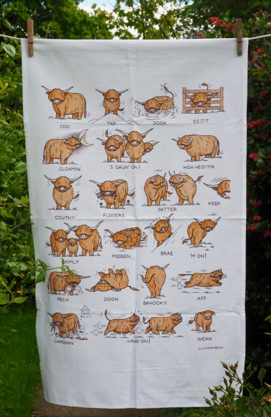 Language of Highland Coos: 2017. To read the story www.myteatowels.wordpress.com/2017/06/07/the-language-of-highland-coos-2017/