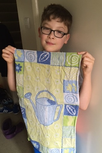 Let me introduce you to Jane. Click her to read Jane's Tea Towel https://virtualteatowelmuseum.com/2017/06/10/janes-tea-towel/