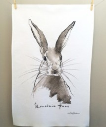 Mountain Hare: On 'loan' from Clare Baird. See In Conversation With...