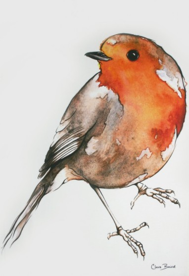Robin: On 'loan' from Clare Baird. See In Conversation With...