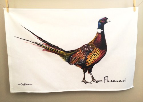 Pheasant: On 'loan' from Clare Baird. See In Conversation With...
