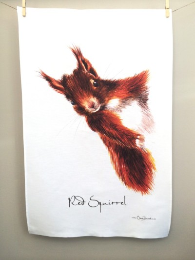 Red Squirrel 2017: To read the story www.myteatowels.wordpress.com/2017/08/25/red