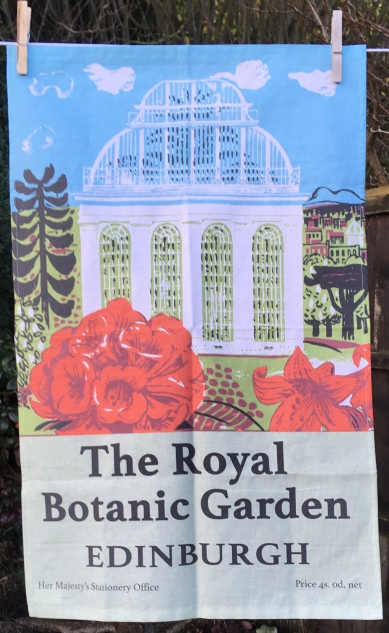Royal Botanic Gardens, Edinburgh: 2018. To read the story www.myteatowels.wordpress.com/2018/12/08/roy