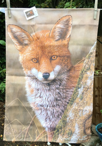 Red Fox: 2019. To read the story www.myteatowels.wordpress.com/2019/09/17/red