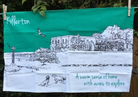 Killerton House: 2019. To read the story www.myteatowels.wordpress.com/2019/09/01/kil