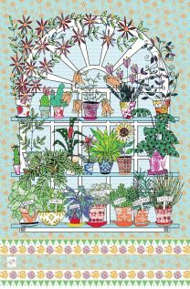Conservatory: On 'loan' from MollyMac